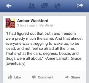 Anne Lamott FB quote